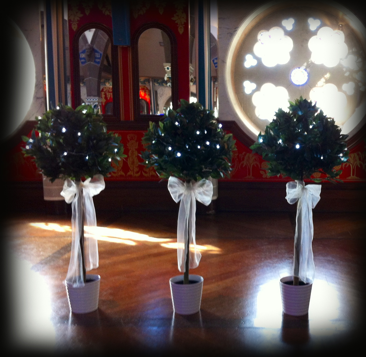 4ft bay tree hire wedding glasgow lily special events lily 4ft bay tree hire wedding glasgow lily special events junglespirit Images