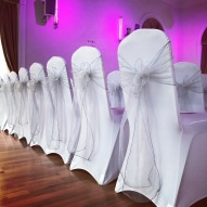 Pale silver bows, Lily Special Events