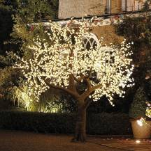 Floor standing led blossom trees, Lily Special Events, hire Glasgow