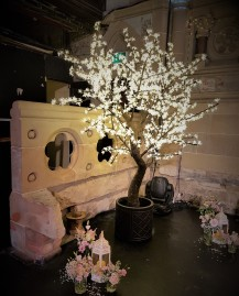 Led blossom trees, Lily Special Events hire