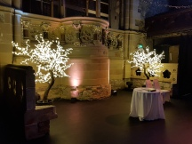 Blossom tree hire, wedding event, Lily Special Events