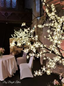 Led blossom trees, Lily Special Events